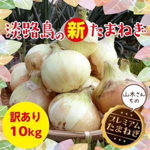 淡路島玉ねぎ 訳あり10kg 【2018年産】【送料無料】美味い!甘い!採れたて! 新たまねぎ 淡路たまねぎ たまねぎ 取り寄せ|awaji-gift