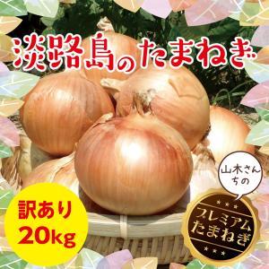 淡路島玉ねぎ 訳あり20kg 【2018年産】【送料無料】美味い!甘い!採れたて! たまねぎ 淡路たまねぎ たまねぎ 取り寄せ|awaji-gift