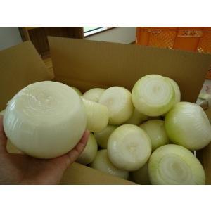 淡路産 むき玉ねぎ 10キロ 上下切り落とし 皮をむく手間が省ける!ゴミが出ない!とっても便利♪【送料無料】 淡路島 淡路島産 むきたまねぎ むきたま awaji-gift