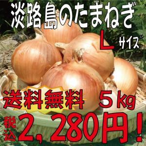 【贈答品・ギフトにどうぞ♪】淡路島玉ねぎ Lサイズ5kg 【送料無料】玉ねぎの本場、淡路島から産地直送♪リピーター続出!りぴたま♪|awaji-gift