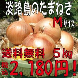 【贈答品・ギフトにどうぞ♪!】淡路島玉ねぎ Mサイズ5kg 【送料無料】 玉ねぎの本場、淡路島から産地直送♪リピーター続出!りぴたま♪|awaji-gift