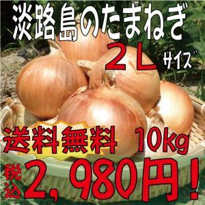 【贈答品・ギフトにどうぞ♪】淡路島玉ねぎ 2Lサイズ10kg 【送料無料】玉ねぎの本場、淡路島から産地直送♪|awaji-gift