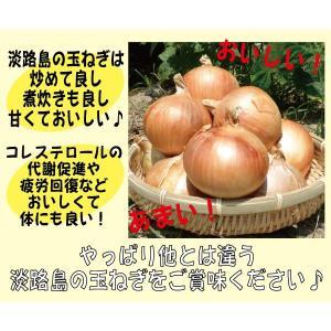 【贈答品・ギフトにどうぞ♪】淡路島玉ねぎ 2Lサイズ10kg 【送料無料】玉ねぎの本場、淡路島から産地直送♪|awaji-gift|02