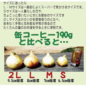 【贈答品・ギフトにどうぞ♪】淡路島玉ねぎ 2Lサイズ10kg 【送料無料】玉ねぎの本場、淡路島から産地直送♪|awaji-gift|05