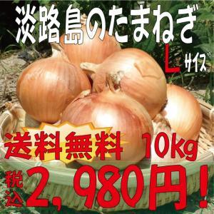 【贈答品・ギフトにどうぞ☆】淡路島玉ねぎ Lサイズ10kg 【送料無料】 玉ねぎの本場!淡路島から産地直送♪|awaji-gift