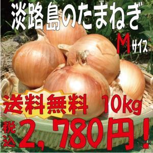 【贈答品・ギフトにどうぞ!】淡路島産玉ねぎ Mサイズ10kg 【送料無料】玉ねぎの本場♪淡路島から産地直送♪|awaji-gift