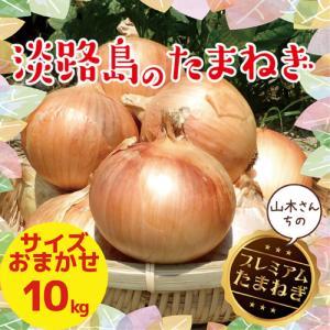 淡路島玉ねぎ 大玉2Lサイズ 10kg【2018年産】美味い!甘い!採れたて! 【送料無料】 たまねぎ たまねぎ 淡路島たまねぎ|awaji-gift