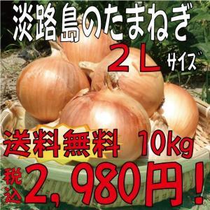【贈答品・ギフトにどうぞ♪】淡路島産玉ねぎ 2Lサイズ10kg 【送料無料】玉ねぎの本場、淡路島から産地直送♪|awaji-gift