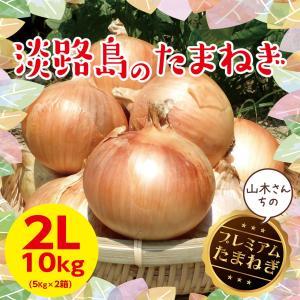 淡路島玉ねぎ 大玉2Lサイズ【5kg×2箱】10キロ 【2018年産】【送料無料】美味い!甘い!採れたて たまねぎ たまねぎ 淡路|awaji-gift