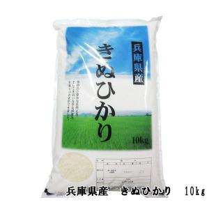 兵庫県産 きぬひかり 10kg|awaji-gourmet
