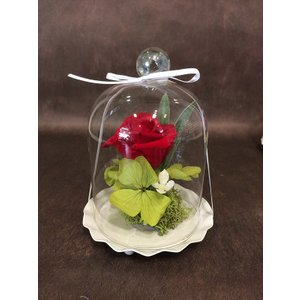 プリザーブドフラワー 母の日 誕生日などのお祝い プレゼント 記念日に最適の贈り物|awaji-waka