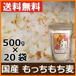 国産 もち麦 500g×20袋 10kg ケース販売 箱買い まとめ買い 100%国内産もち麦使用 お米に混ぜて炊くだけ 送料無料