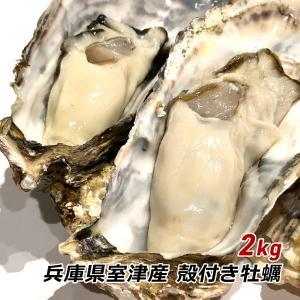牡蠣 殻付き 2kg カキ かき 兵庫県 御津産 室津産 加熱用 バーベキュー 牡蠣フライ 牡蠣鍋 お取り寄せ ご当地グルメ 産地直送 産直 送料無料|awajikodawari