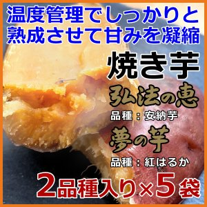 焼き芋 2品種入り×5袋 安納芋 紅はるか 弘法の恵 夢の芋 さんわ農夢 香川県 産地直送 さつまいも サツマイモ 蜜芋 みつ芋 熟成芋 送料込|awajikodawari