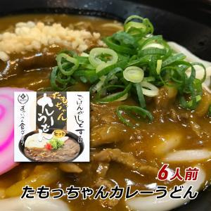 たもっちゃん 生うどんカレーセット 6人前 (つゆ付) 香川...