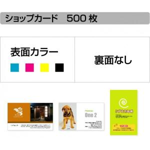 ショップカード 印刷 作成 【500枚単位】名刺ケース1個付属|awake