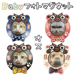 Babyシーサーのフォトマグネット雄4色 JIN(サイズ:縦6.8センチ×横7.4センチ、幅0.8センチ)|awamori-zizake