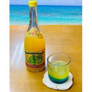 請福シークヮーサーリキュール 粒入り 720ml リキュール 果実酒 請福酒造 琉球泡盛 焼酎|awamori-zizake