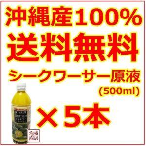 シークヮーサー シークワーサー原液 沖縄 オキハム 500ml  5本セット