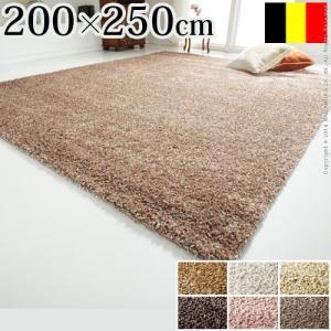 ベルギー製 ウィルトン織り シャギーラグ リエージュ 200x250cm|axisnet