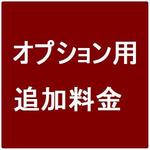 【オプション料金】 3,000円 axisnet