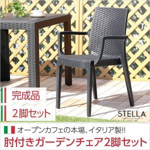 ガーデン肘付チェア 2脚セット ステラ-STELLA- (ガーデン カフェ)|axisnet