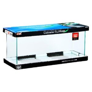 GEX グラステリアスリム600水槽|ayahadio