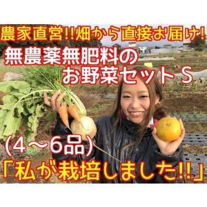 無農薬野菜セット S(4~6品)