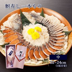 鮒寿し [一本もの・中サイズ] 珍味 おつまみ 肴 ギフト 鮒寿司 ふなずし 琵琶湖 滋賀|ayukimura