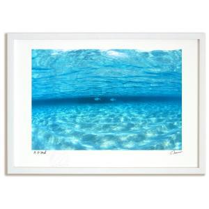 アートフォト 絵画 壁掛け 透明な海を泳ぐ魚(モルディブ) 海 インテリア 壁掛け 額入り アート ...