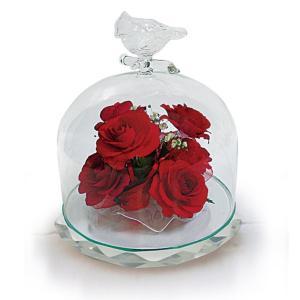 ボトルフラワー/トリのモチーフ台座付きA/レッド/ドライフラワー 花 天然色 おしゃれ 枯れない 飾り 華やか 高級 誕生日 祝い ギフト 母 祖母|ayuwara
