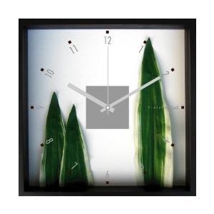 掛時計/Phormium tenax(ニューサイラン)/ウォールクロック インテリア 壁掛け ギフト プレゼント 新築祝い おしゃれ アート|ayuwara