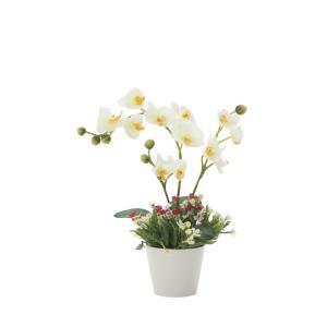 アートフラワー 造花 ミックスコチョウラン フロアタイプ/光触媒 観葉植物 フェイクグリーン 花 開店祝い 開業祝い 誕生祝い 造花 おしゃれ|ayuwara