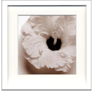 フォトフレーム/jk driggs Blossom[Four](ブロッサム4)/壁掛け 立てかけ 記念 写真 飾り 出産祝い 結婚祝い 写真立て ayuwara