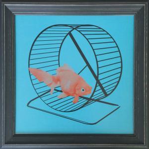 アートフレーム Jason Laurits Goldfish/絵画 壁掛け 壁飾り インテリア 油絵 花 アートパネル ポスター 絵 額入り リビング 玄関|ayuwara