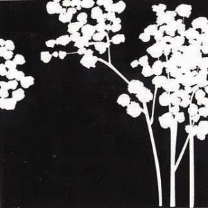 ペーパーアートパネル/NEW DESIGN CONCEPT5/絵画 壁掛け 壁飾り インテリア 油絵 花 アートパネル ポスター 絵 額入り リビング 玄関|ayuwara
