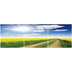 アートフレーム ND Concept Frame 3枚set 菜の花の道/絵画 壁掛け 壁飾り インテリア 油絵 花 アートパネル ポスター 絵 額入り リビング 玄関 ayuwara