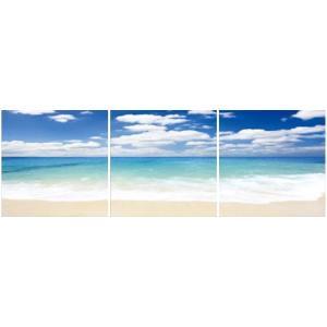 アートフレーム ND Concept Frame 3枚set 海1/絵画 壁掛け 壁飾り インテリア 油絵 花 アートパネル ポスター 絵 額入り リビング 玄関|ayuwara