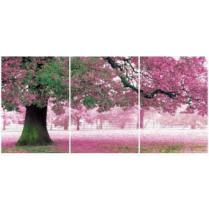 アートフレーム ND Concept Frame 3枚set 桜/絵画 壁掛け 壁飾り インテリア 油絵 花 アートパネル ポスター 絵 額入り リビング 玄関|ayuwara