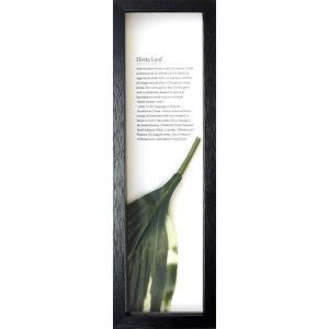 リーフパネル 絵画/ゆうパケット ハディアフータン ホスタリーフ1(ブラック)/絵画 壁掛け 壁飾り インテリア 花 アートパネル 絵 額入り リビング 玄関|ayuwara