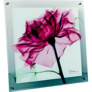 レントゲンアート X RAY ガラス アート「ティール ローズ(Mサイズ)」/絵画 壁掛け 壁飾り インテリア|ayuwara