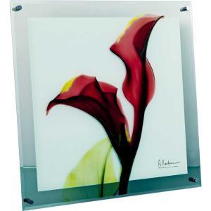 レントゲンアート X RAY ガラス アート「カラー レッド(Lサイズ)」/絵画 壁掛け 壁飾り インテリア|ayuwara