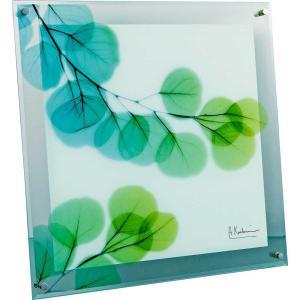 レントゲンアート X RAY ガラス アート「ユーカリ(Lサイズ)」/絵画 壁掛け 壁飾り インテリア|ayuwara