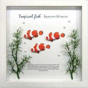 アクアフレーム/ゆうパケット Aqua Frame Clownfish(クラウンフィッシュ(クマノミ) )|ayuwara