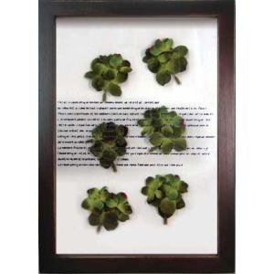 ハーブフレーム/musee de herbe Hydrangea Green(ミュゼ ド エルブ ハイドレインジャ/あじさい ピンク) ayuwara