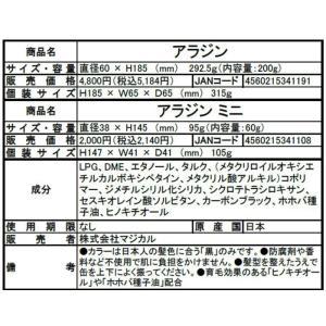 アラジンスプレー 200g 日本製 男女兼用  az-shop 04