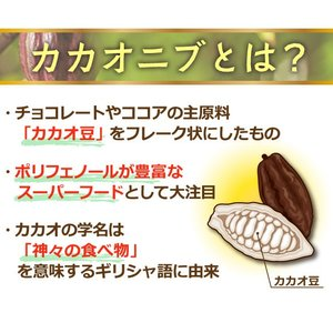 JNC カカオニブ 270g  即納|az-shop|02