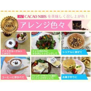 JNC カカオニブ 270g  即納|az-shop|07