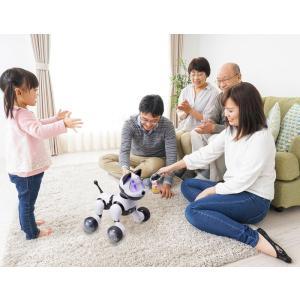 ロボット犬 歌って踊ってわんわん RI-W01  即納|az-shop|06