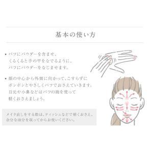 サラフェフィニッシングパウダー 即納|az-shop|05